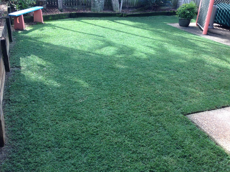 Have You Thought About Painting Your Lawn?