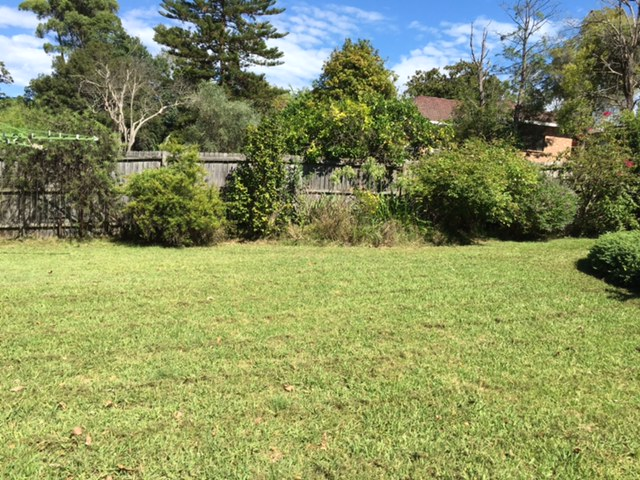 """After"" photo of Northmead lawn mowing © GreenSocks"