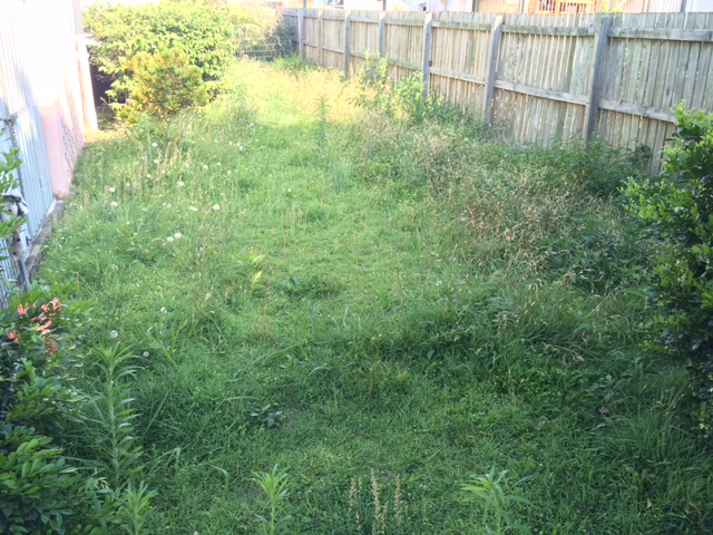 """Before"" photo - Inala yard clean ups and lawn mowing - © GreenSocks"