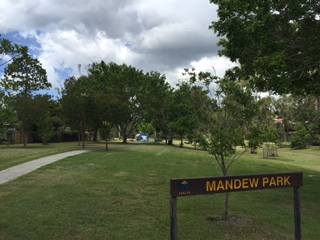 Green, mowed lawns in Mandew Park - Shailer Park, Queensland © GreenSocks