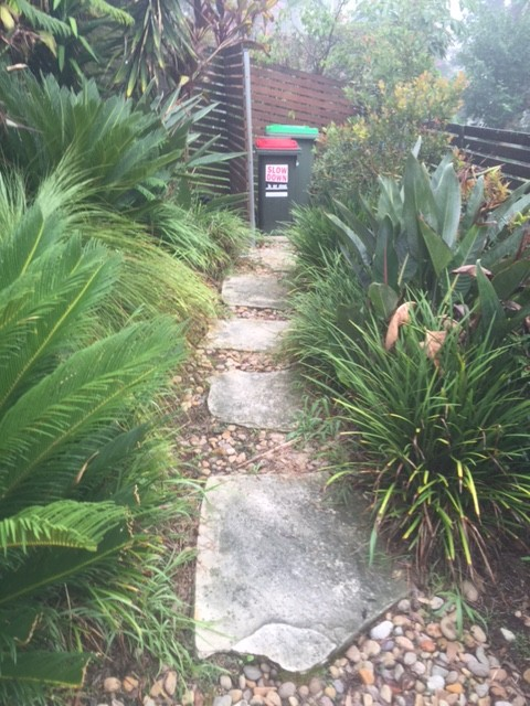 """Before"" photo of Lane Cove pruning job © GreenSocks"