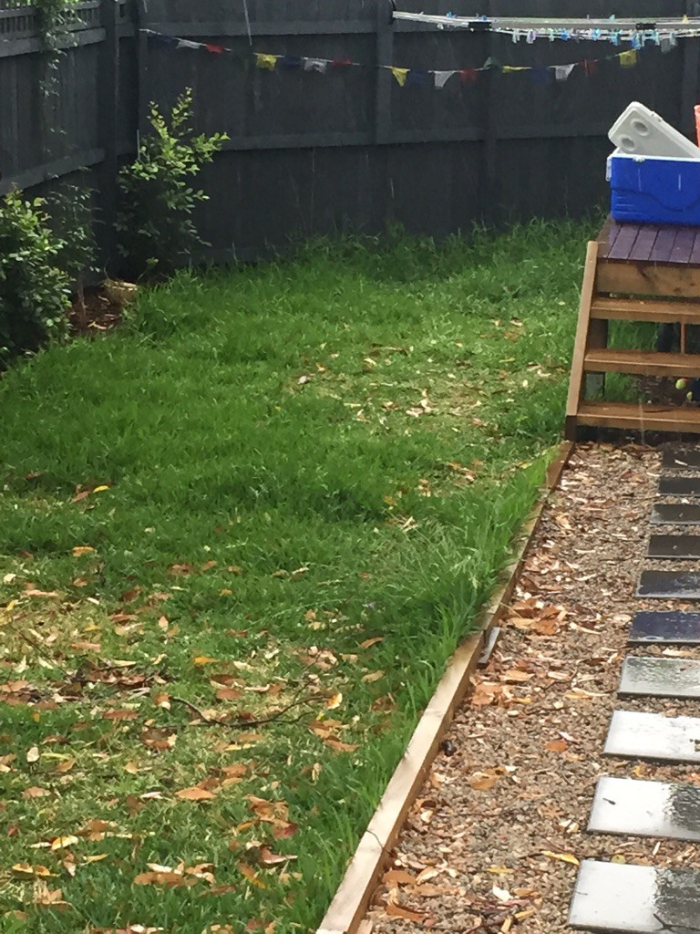 """Before"" photo of lawn mowing Manly Vale © GreenSocks"