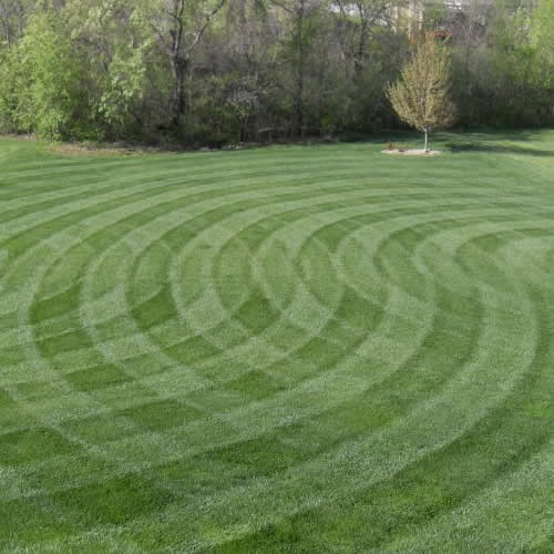 Lawn striping can affect how much lawn pros charge for lawn mowing (Image credit: MowersDirect.com)