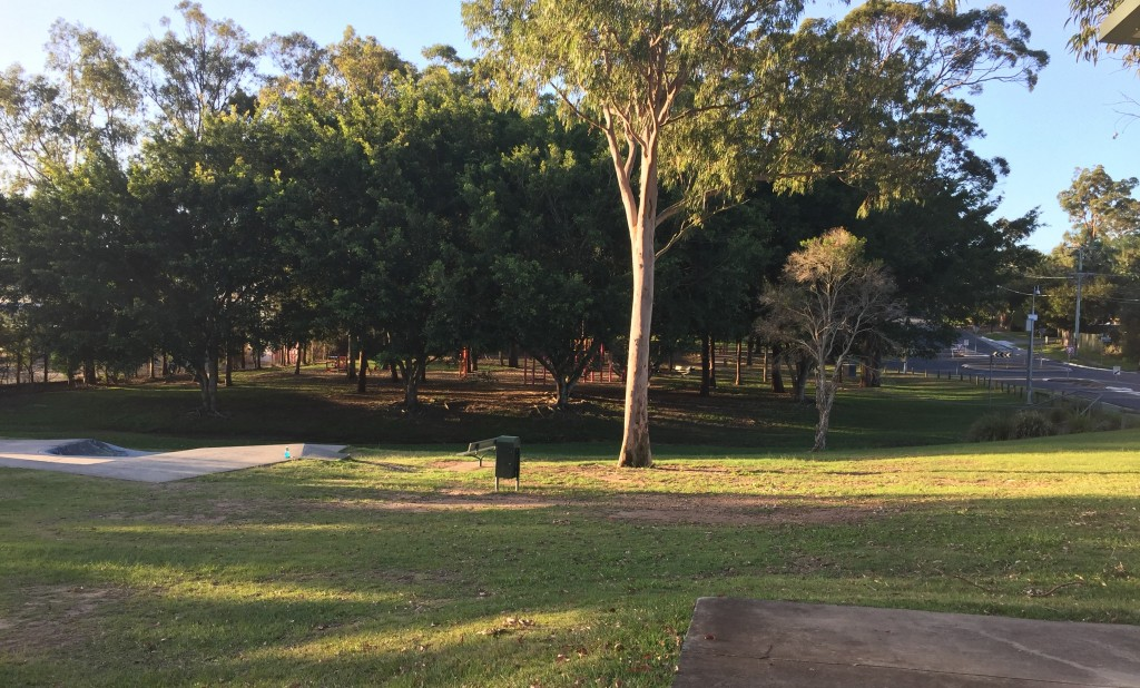 Looks like someone needs Springwood lawn mowing services at this local neighbourhood park? © GreenSocks